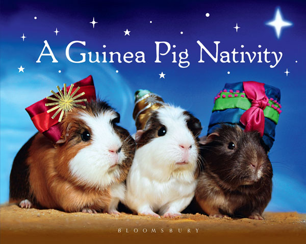 guinea-pig-nativity-1310-60
