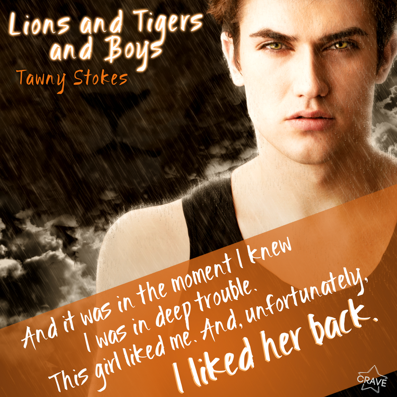 Lions Tigers And Boys By Tawny Stokes