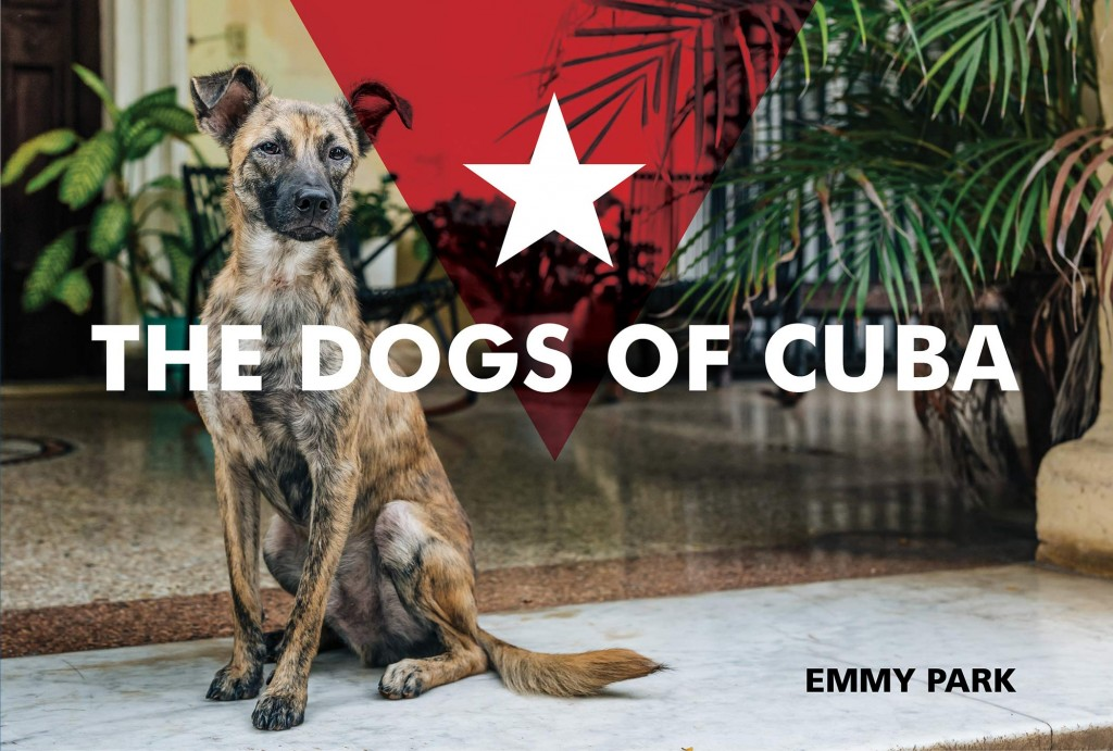 Dogs of Cuba, Cuba, Dog, Photographs