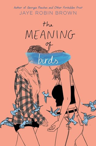 The Meaning Of Birds, Jaye Robin Brown, Salmon, Blue, Birds, Girls, LGBT, Young Adult