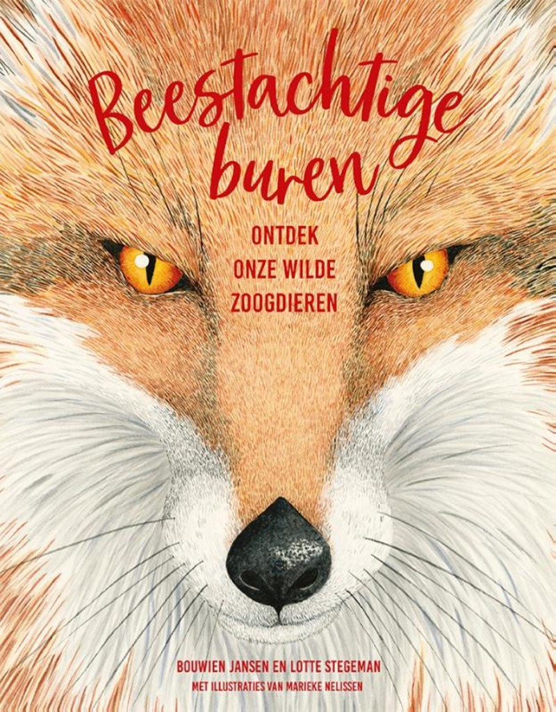 Beestachtige Buren, Bouwien Jansen, Lotte Stegeman, Marieke Nelissen, Fox, Orange, Yellow/Orange Eyes, Non-fiction, Animals