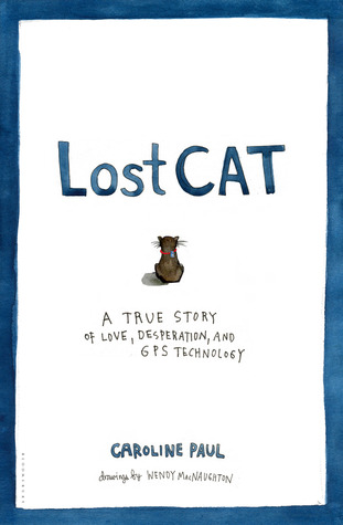 Lost Cat, Caroline Paul, Cat, Blue Letters, White Background, Cats, Humour, Finding Cats, Cat Lover, Wendy MacNaughton