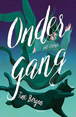 Ondergang, Suicide, Abuse, Young Adult, Thriller, Mystery, Girl, Falling, Cat, Tine Bergen, College, Book 3, Final Book, Blue, Green, Multiple POV