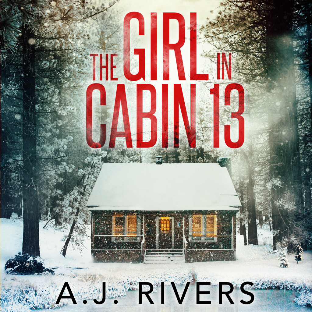 Emma Griffin FBI, THE GIRL IN CABIN 13, THE GIRL THAT VANISHED, Mystery, Murder, Snow, Cabin, Forest, Woods, Secrets, Disappearances, Truths, Clues, FBI, Police