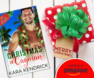 Christmas in Cayman, Present, Guy, Book, Romance, Sex, Christmas, Novella