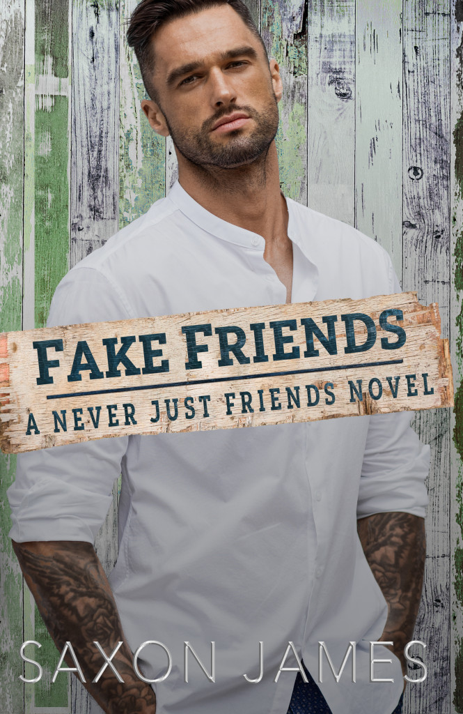 Fake Friends, Saxon James, Gray, Wood, Man, Kindle, Book, Romance, LGBT