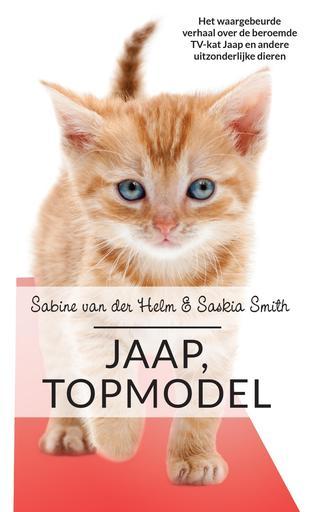 Jaap topmodel, Cat, Orange, Tabby, Animals, Modelling, Non-Fiction, Short Stories, Sabine van der Helm